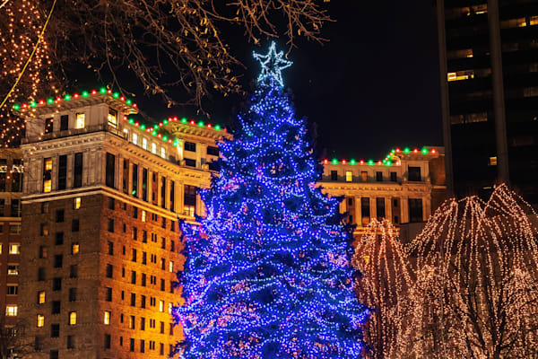 Rice Park Christmas - St Paul Pics | William Drew Photography