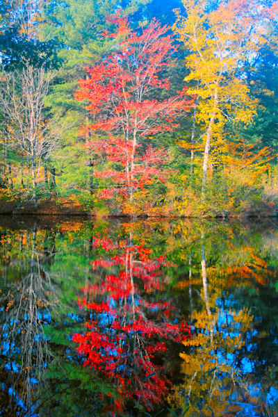 Berkshires Reflection|Fine Art Photography by Artist Todd Breitling