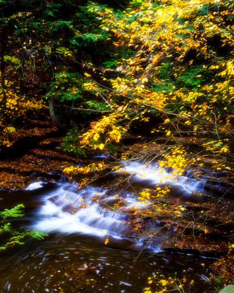 Autumn Along Buttermilk Creek