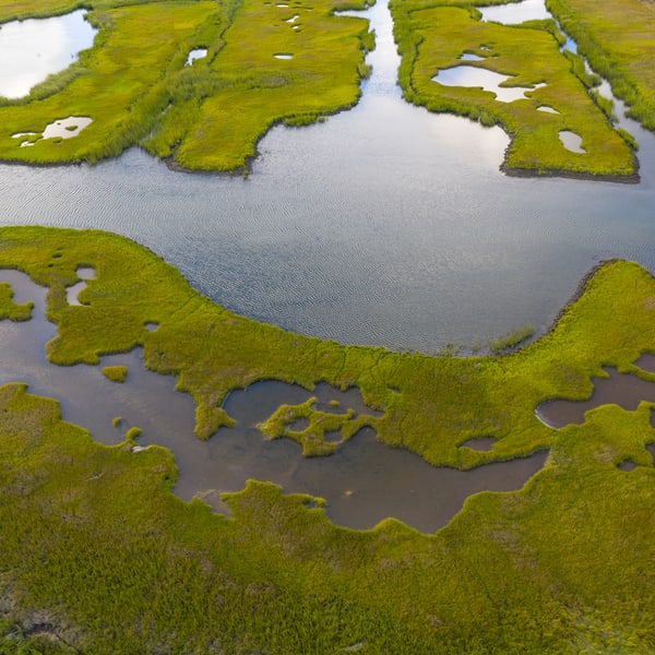 Salt Marsh Aerial Photography Art | Kit Noble Photography