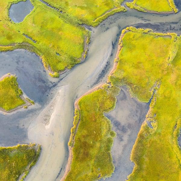 Folger's Marsh #2 (Square) Photography Art | Kit Noble Photography
