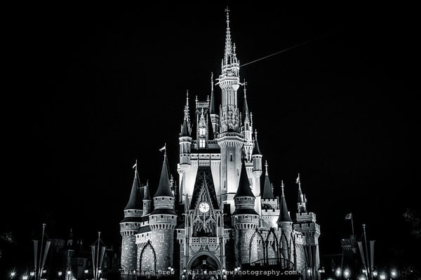 Cinderella Black and White - Magic Kingdom Wall Mural | William Drew