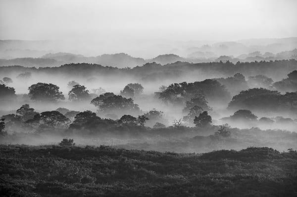 Foggy Moors Photography Art | Kit Noble Photography
