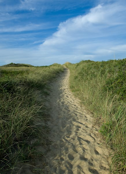 Dionis Beach Path Photography Art | Kit Noble Photography