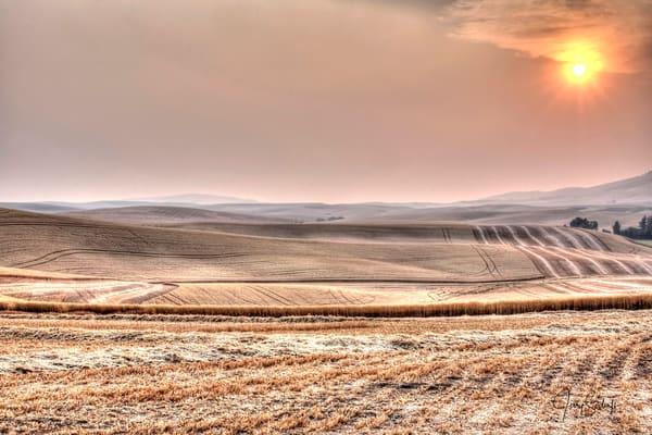 Moody Harvest Sunset