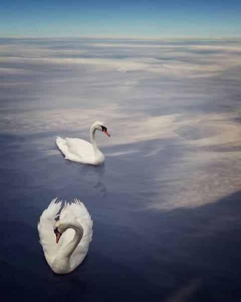 Swimming Between Dimensions