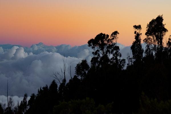 Haleakala Mornings