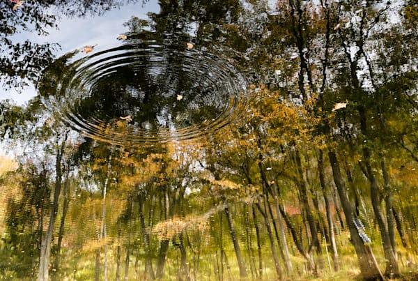 Reflections1 Photography Art   Kim Bova Photography