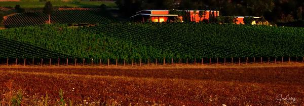 Palmer Creek Winery Sunrise