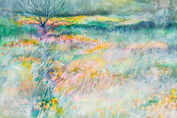 Field Of Dreams Art | Terrie Haley Artist