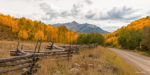 art, fine art, contemporary, fall, aspen, leaves, colorado, mountain, gothic, colorful, bold