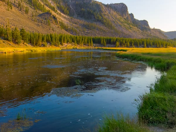 Yellowstone Park Photography Art | FocusPro Services, Inc.