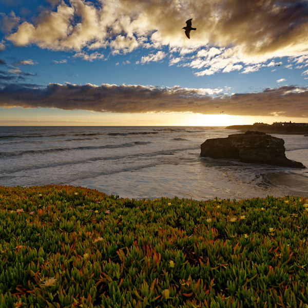Natural Bridges Sunset Photography Art | FocusPro Services, Inc.