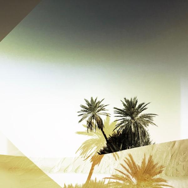 Palms Squared, Sahara Art | photographicsart