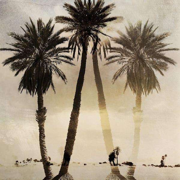Palm Fantasy 2