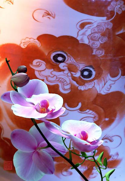 Ancient Dream Photography Art | cosimo scianna