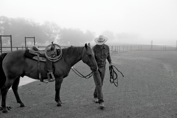 Cowboy and horse in morning fog, 44 Farms, near Cameron, Texas