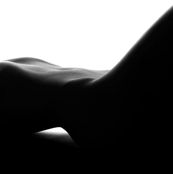 B&W Image of Nude Female Torso,