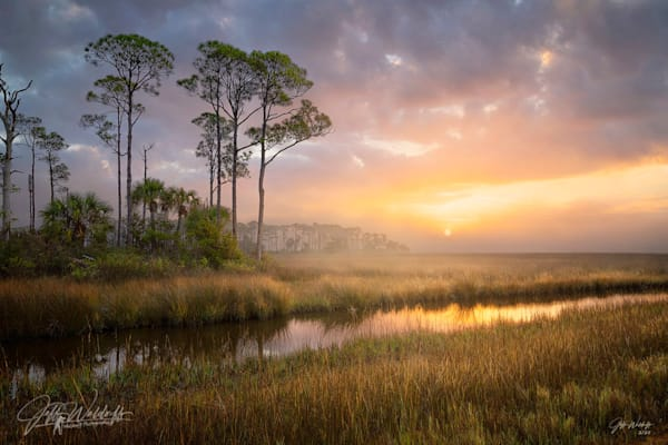 St. Marks, Panacea Unit, Florida| Limited Fine Art Prints | Photography by Jeff Waldorff