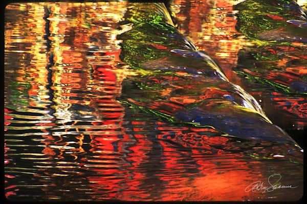 Fall Reflections Photography Art   cosimo scianna