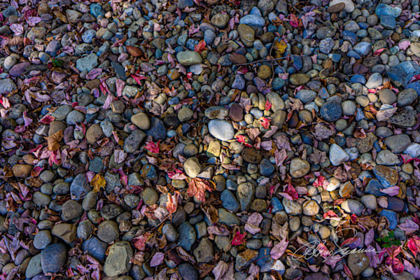 Autumn Stones Photography Art   cosimo scianna