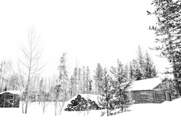 Winter Log Cabin in the White River National Forest bw