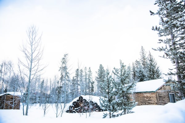 Winter Log Cabin in the White River National Forest