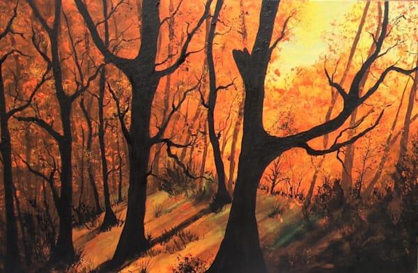 Sunrise In Forest Art | House of Fey Art