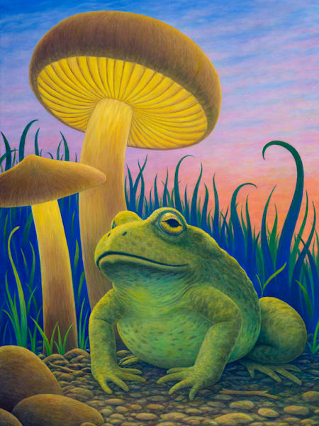 Magic Toad Limited Canvas Giclee Art   markhensonart