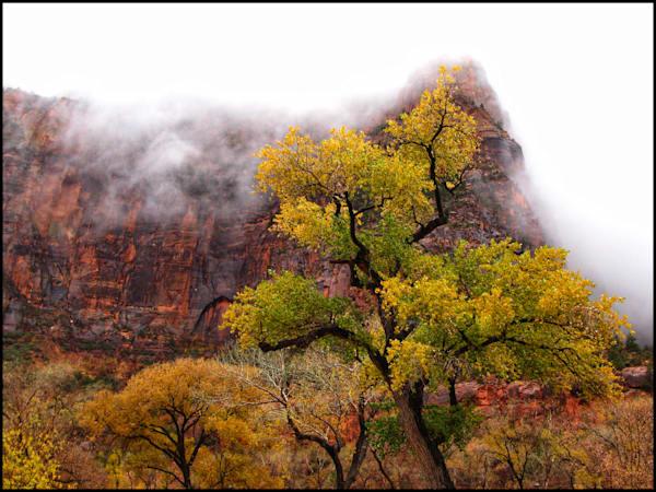 Zion In The Mist Art | photographicsart