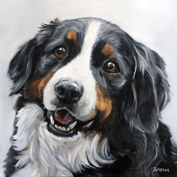 Bernese Mountain Dog Portrait Fine Art Print
