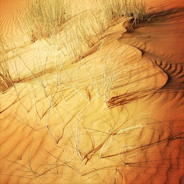 Sahara Sand 3 Art   photographicsart