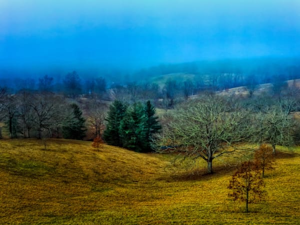 Biltmore Foggy Morning Photography Art | FocusPro Services, Inc.