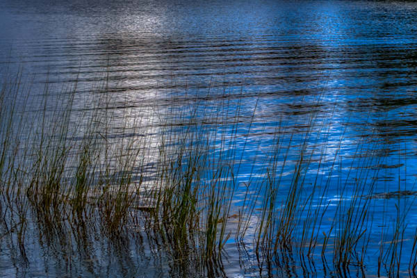 Calm Waters Photography Art | FocusPro Services, Inc.