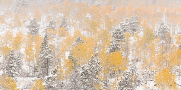 Art photos of the Rocky Mountains of Colorado as panoramics by James Frank