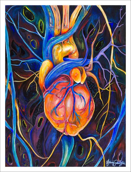Human Heart (Anatomy) Art   Jamila Art Gallery