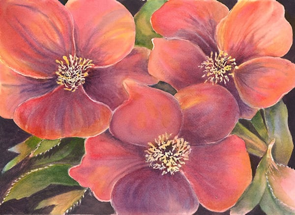 """Brief Beauties"" fine art print by Gayle Brunner."