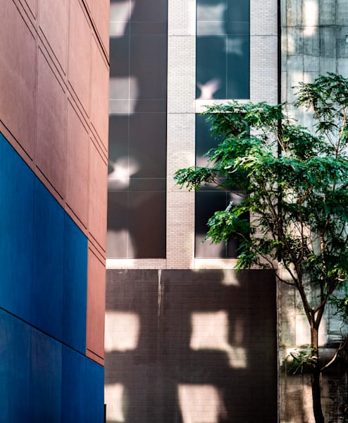 Reflections On Building, Nyc Photography Art | Ben Asen Photography