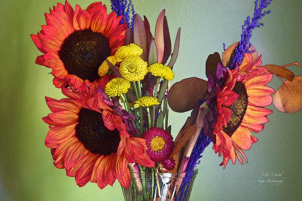 Maggie S Flowers Photography Art | artbysmiths