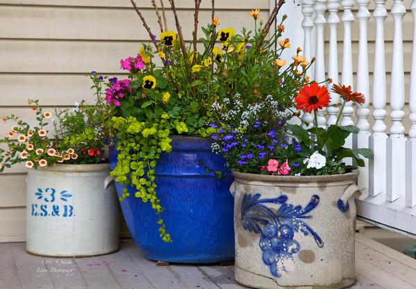 Porch flowers