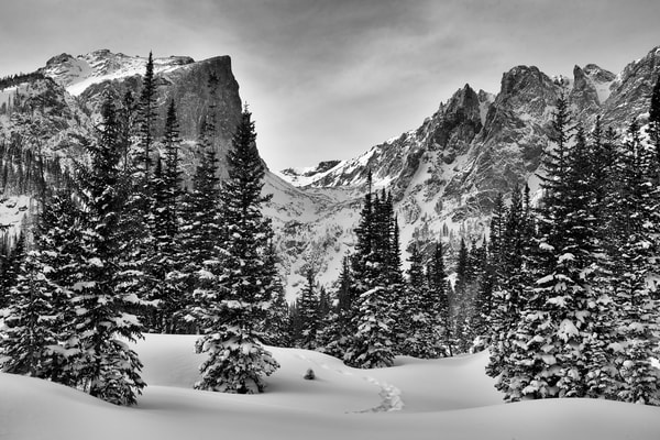 A Winter Walk In Rocky Mountain National Park Photography Art | Nicholas Jensen Photography