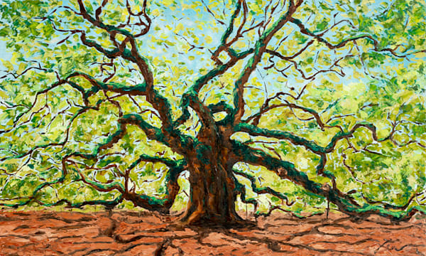The Majestic Angel Oak Tree | Fer Caggiano Art