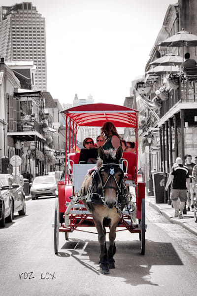 Carriage French Quarter Decatur Street