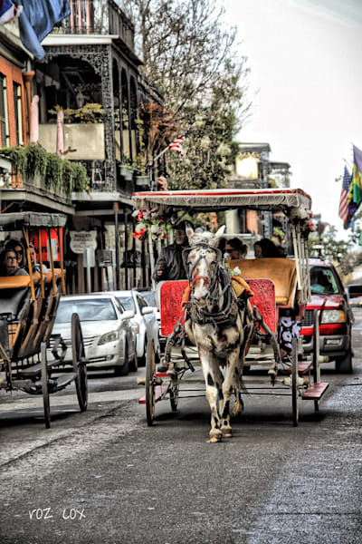Carriage in the French Quarter