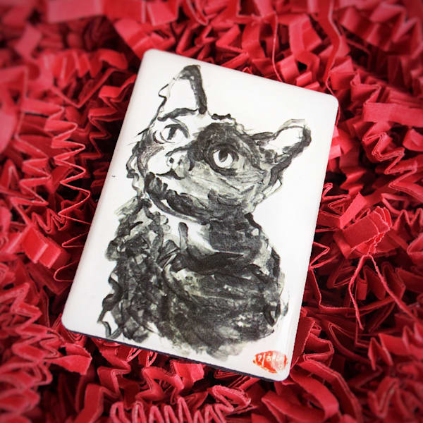 Lucy (Domestic Shorthair Cat) Art | popofpaper