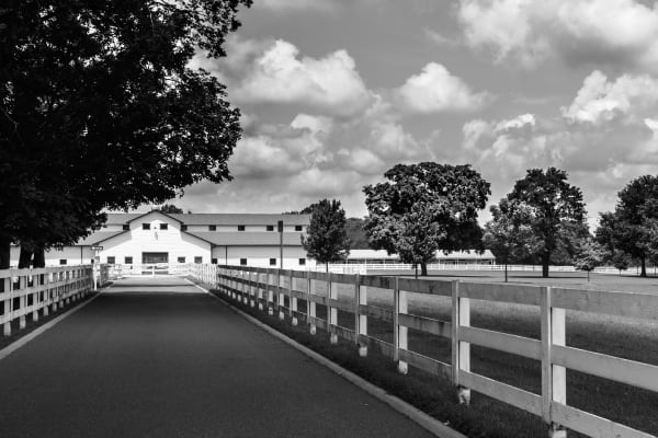 Franklin Tennessee's Harlinsdale Farm Captured by Photographer Davin McLaird