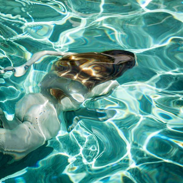 Sarah S Pool 2 Photography Art | Dan Katz, Inc.
