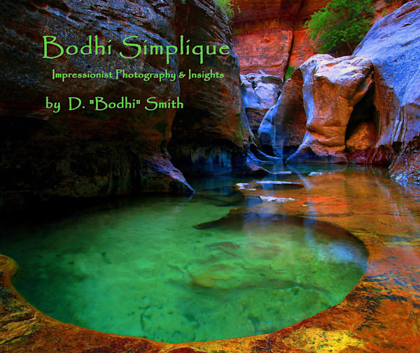 Bodhi Simplique Book One