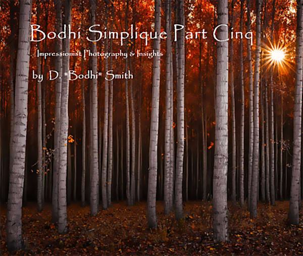 Bodhi Simplique Book Number Five | bodhi smith photography