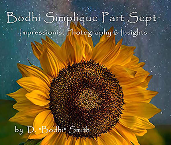 Bodhi Simplique Book Number 7
